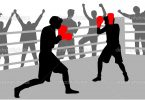 fight in the ring